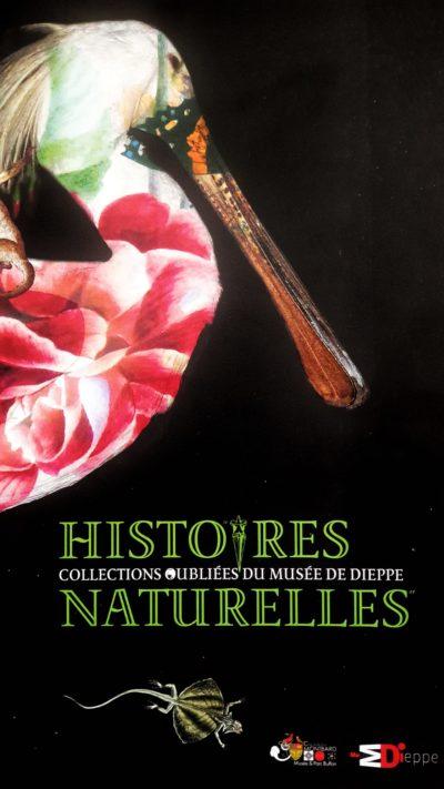 Histoires Naturelles – Musée de Dieppe