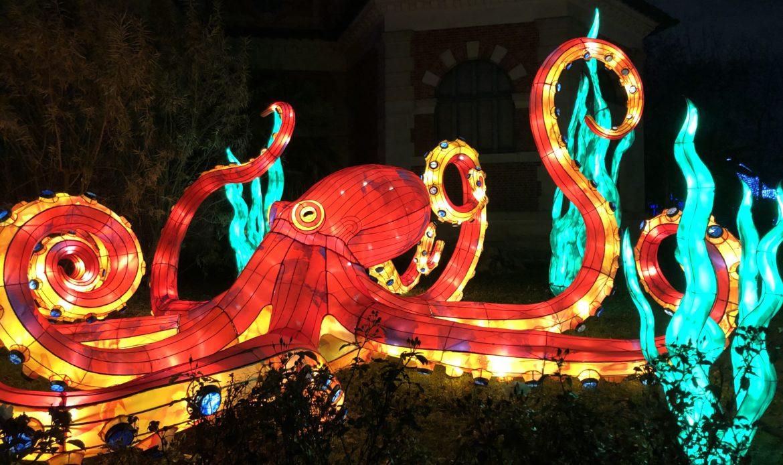 Ocean Illumination au Jardin des Plantes