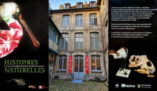 Histoire d'Histoires  (Naturelles)